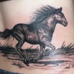 22 - Horse - Brian Wren
