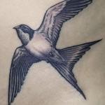 28 - Swallow - Brian Wren